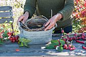 Zierapfel - Gesteck : Frau legt Ranken als Steckhilfe in Zink-Gefäß