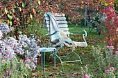 Sitzplatz neben Zierapfelbaum und Herbstaster