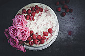 Raspberry and vanilla sponge cake with chocolate cream