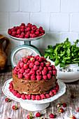 Schokoladenkuchen mit frischen Himbeeren