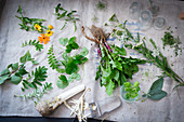 Various wild herbs on a white linen cloth