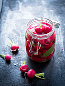 Pickled, fermented radishes in a preserving jar