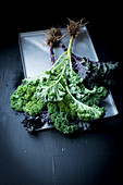 Fresh kale with roots