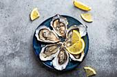 Frische Austern mit Zitrone