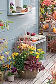 Herbstschale mit Chrysanthemen, Purpurglöckchen, Rotgras und Johanniskraut