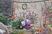 Schale mit Herbstdekoration Tripmadam, Strauchveronika und Stiefmütterchen