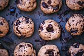 Chocolate Chip Cookies auf Backblech