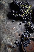 Frische blaue Trauben und Heidelbeeren auf dunklem Metalluntergrund