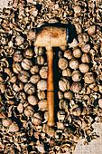 Ganze Walnüsse und Walnussschalen mit Holzhammer