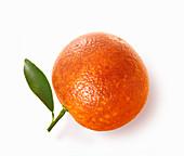 Whole blood orange with leaf