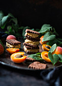 Vegan apricot ice cream sandwiches
