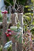 Windlicht mit mit Zieräpfeln, Zapfen und Kiefernzweig am Gartenzaun