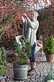 Bank am Zierapfelbaum 'Evereste', Töpfe mit Herbstbepflanzung
