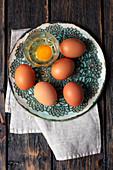 Frische braune Eier und ein aufgeschlagenes Ei im Glas