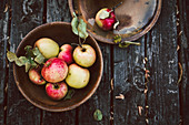 Apples in a ceramic bowl on a rustic wooden background