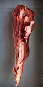 Aufgehängtes Fleischstück