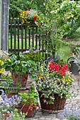 Buntes Arrangement mit Sommerblumen und Erdbeeren