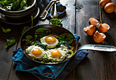 Fried Eggs and Spinach in a Frying pan