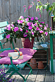 Edellieschen Paradise 'Moyo' im Blechtopf auf Gartenbank