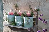Windlichter auf Wandboard, dekoriert mit Sternen und Kräutern