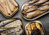 Verschiedene Fischdosen