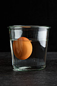 An old egg floating in a glass of water