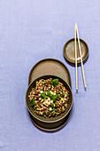 Asiatisches Reisfleisch