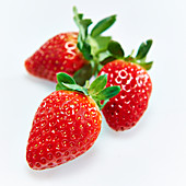 Three strawberries in front of a white background