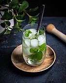 Mojito (a cocktail of rum, lime juice, mint, cane sugar and soda water)