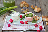 Radish cream and green radish pesto