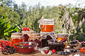 Various jams made from wild berries