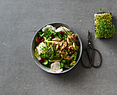 A colourful salad with a chicken and nut topping