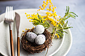 Festive table setting with mimosa flowers for easter holiday dinner