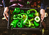 Farmers hands with green peppers
