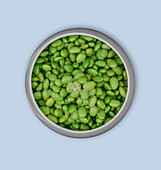 A bowl of cooked edamame