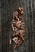 Chopped chocolate on a wooden background