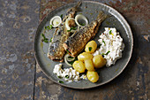 Fried herring with potatoes and quark