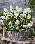 Topf mit Frühlingsblumen