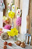 Stillleben mit Blumenzwiebeln und Blüten
