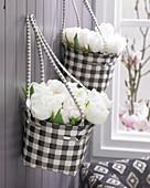Tulipa 'White Heart'