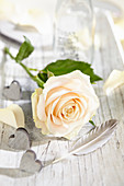 Rosenblüte mit Herzen und Feder