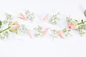 Blumen-Collage mit Rosenblüten und Schleierkraut