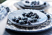 Blueberries on blue and white dishes (close up)