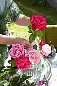 Frau steckt Rosenstrauß in Glasvase