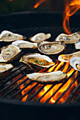 Oyster on a barbecue