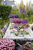 Herbstliche Tischdekoration mit Astern und Kürbissen