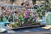 Tischdekoration mit Frühlingsblühern auf Holzbrett