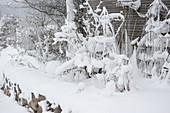 Verschneite Pflanzenstützen im winterlichen Garten