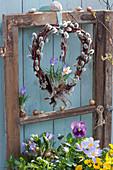 Herz aus Kätzchenweide mit Krokussen am alten Fensterflügel