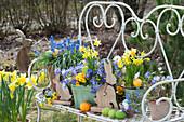 Osterdeko mit Narzissen, Traubenhyazinthen, Strahlenanemonen und Primel in Töpfen auf Bank im Garten